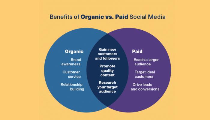 Organic social media