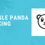 Google Panda Ranking copy